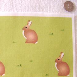 PurpleIbis.com Cottontail Rabbit Fabric - Actual Photo